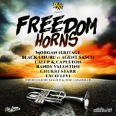 Seani B - Freedom Horns