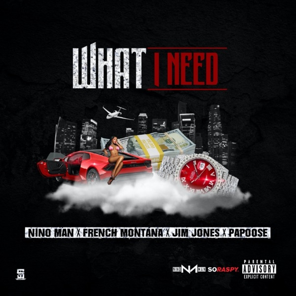 What I Need (Remix) [feat. French Montana, Jim Jones & Papoose] - Single