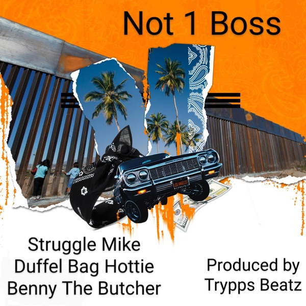 Not 1 Boss - Single