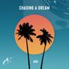 NSH - Chasing a Dream artwork