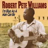 Robert Pete Williams - Just Tippin' In