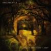 Fallen-Fractured Planet - EP