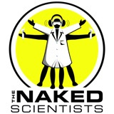 Image of The Naked Scientists Podcast podcast