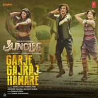 Garje Gajraj Hamare (From