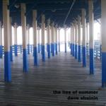 Dave Sheinin - The Lies of Summer