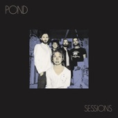 Pond - The Weather (Live)