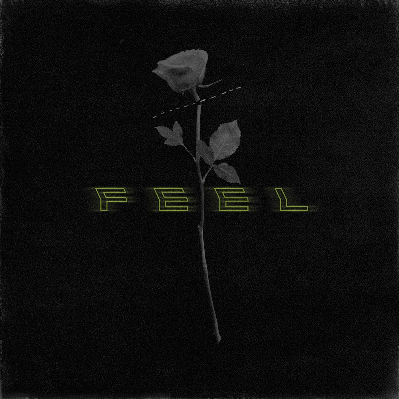 Perceptions - Feel (2019)