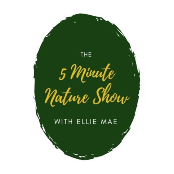 5 Minute Nature Show