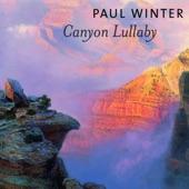 Paul Winter - Music Temple