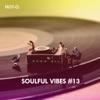 Soulful Vibes, Vol. 13