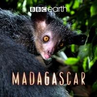 Télécharger Madagascar, Series 1 Episode 3