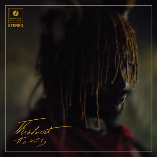Thundercat – It Is What It Is [iTunes Plus AAC M4A]