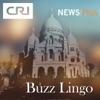 Buzz Lingo
