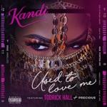 Used To Love Me (feat. Todrick Hall & Precious) - Single