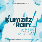 A Kumzitz In The Rain, Vol. 4-Junior