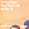 Echonomist - Shelter by the Moon (feat. Mr. Lookman) artwork