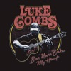 Beer Never Broke My Heart - Single, Luke Combs