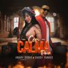 bajar descargar mp3 Con Calma (feat. Daddy Yankee) [Remix] - Jinary Duque