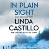 In Plain Sight AudioBook Download