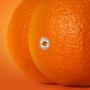 The Juice, Vol. II - Emotional Oranges - Emotional Oranges