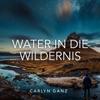 Water in Die Wildernis - Single