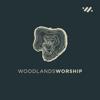 Woodlands Worship - Live  artwork