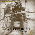 Playing for Change - Walking Blues (feat. Keb' Mo')
