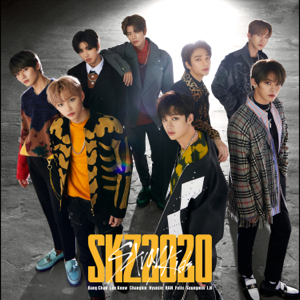 Stray Kids - SKZ2020