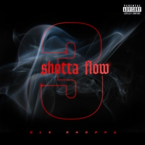 NLE Choppa - Shotta Flow 3