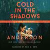 Toni Anderson - Cold In The Shadows: FBI Romantic Suspense  artwork