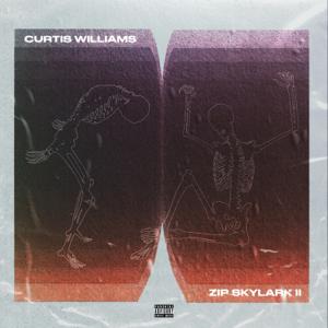 Curtis Williams - Zip Skylark 2: The Wrath of Danco