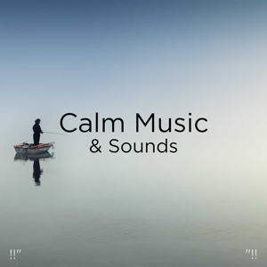"Nature Sounds Nature Music & Nature Sounds - !!"" Calm Music & Sounds ""!!"