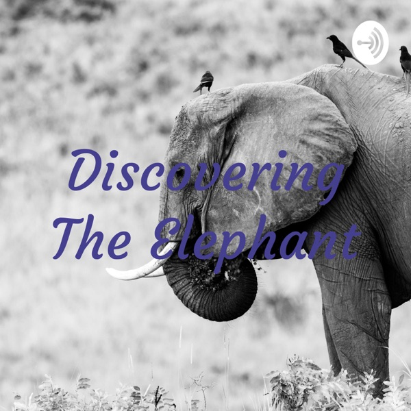 Discovering The Elephant