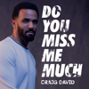 Craig David - Do You Miss Me Much artwork