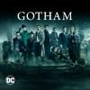 Gotham, Seasons 1-5 wiki, synopsis