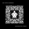 Sea Turtle Harmonic - New Romantics (Arr. for Piano)