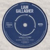 Acoustic Sessions by Liam Gallagher
