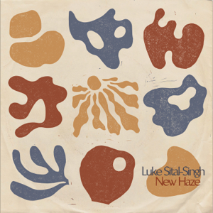 Luke Sital-Singh - Skin of a Fool