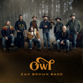 Zac Brown Band - The Owl  artwork