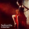 DJ BestMix - SeГ±orita (Ringtone Version) artwork