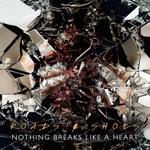 Nothing Breaks Like a Heart - Single