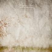 Wanderer's Trove - Midsummer Waltz