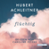 Hubert Achleitner - Flüchtig