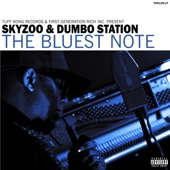Skyzoo,Dumbo Station - We (Used to) Live in Brooklyn, Baby