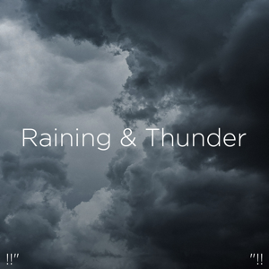 "Thunderstorm Sound Bank & Thunderstorm Sleep - !!"" Raining & Thunder ""!!"
