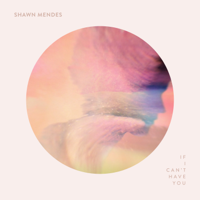 Album If I Can't Have You - Shawn Mendes