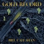 Bill Callahan - The Mackenzies