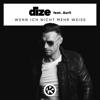 DIZE - Wenn ich nicht mehr weiss (feat. Aurii) artwork