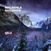 Nhlanhla Mhlongo - Ijele artwork