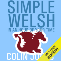 Simple Welsh in an Hour of Your Time: Kickstart Your Welsh Today (Unabridged)